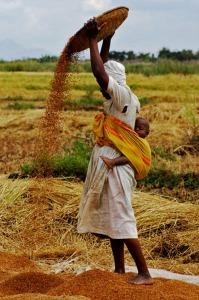 Fotografía tomada del portal de la Fundación África Dream.-
